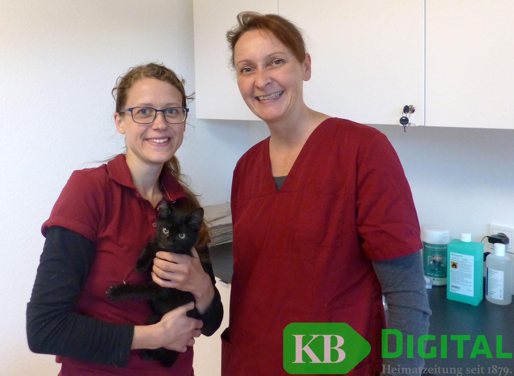 Tierarzt kevelaer
