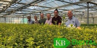 Mitglieder der FPD Kevelaer besichtigen die Baumschule Peters.