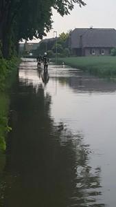 Hochwassereinsatz der Feuerwehr